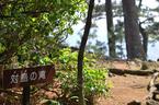 伊豆 城ヶ崎 対馬の滝