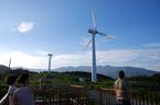伊豆 稲取 風車