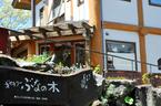伊豆高原 クラフト アート ギャラリー ぶなの木