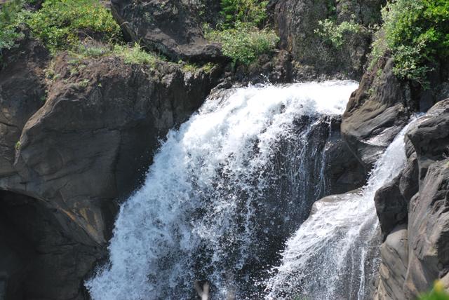 伊豆 伊豆高原 自然 対島の滝