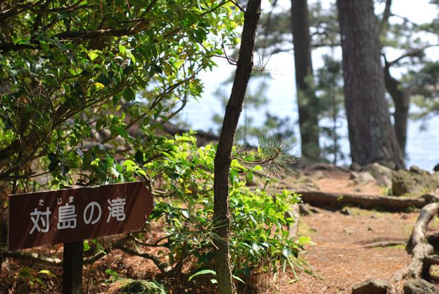 伊豆 伊豆高原 自然 対馬の滝